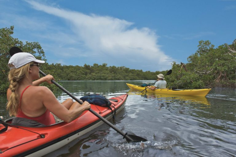 Naples_Paddle_the_Mangroves